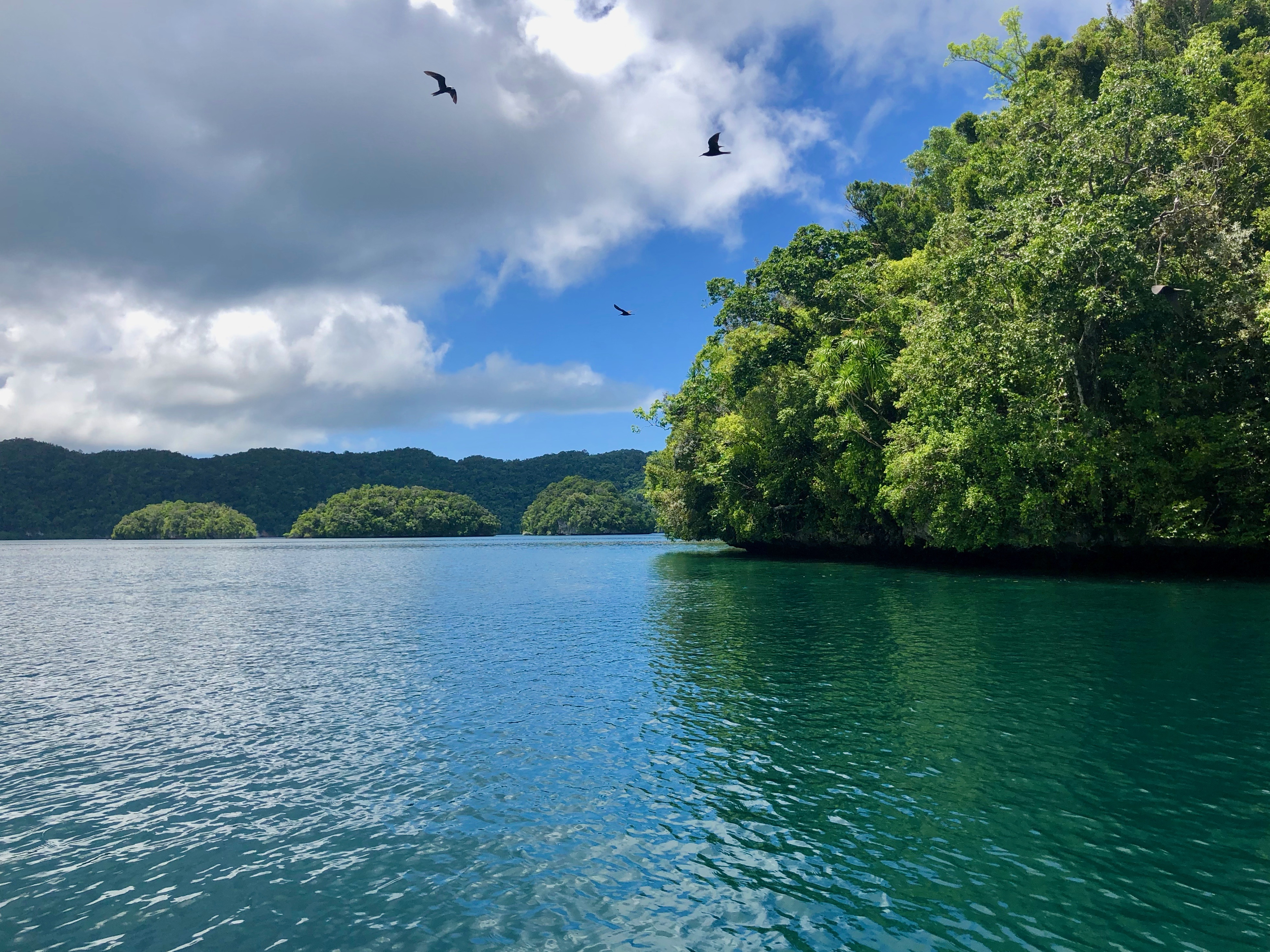 Climate Change in Palau: Indicators and Considerations for Key Sectors