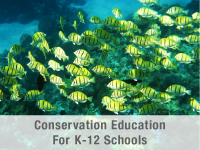 K-12 Environmental Education