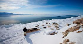 An Inuit man with hissled dogs overlooks newly melted Arctic sea ice.