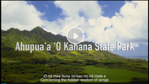 video icon for and link to kahana valley footage