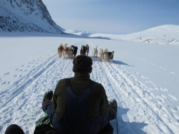 Sled with dogs