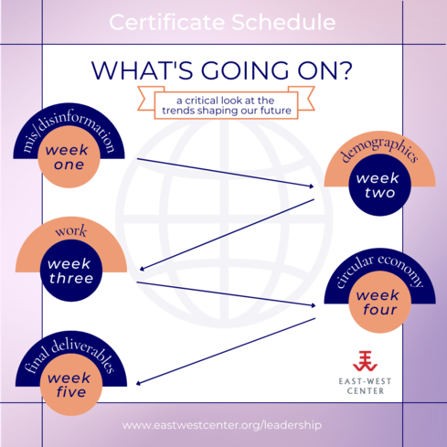 'What's Going On?' certificate series schedule